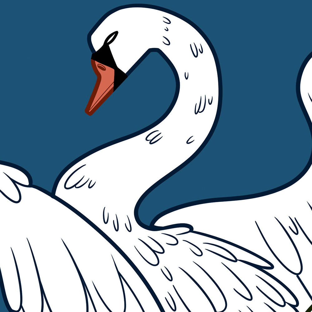 STRATFORD LITERARY FESTIVAL 2017, book cover, illustrator, swan